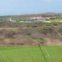 CUR_P2_Golf3